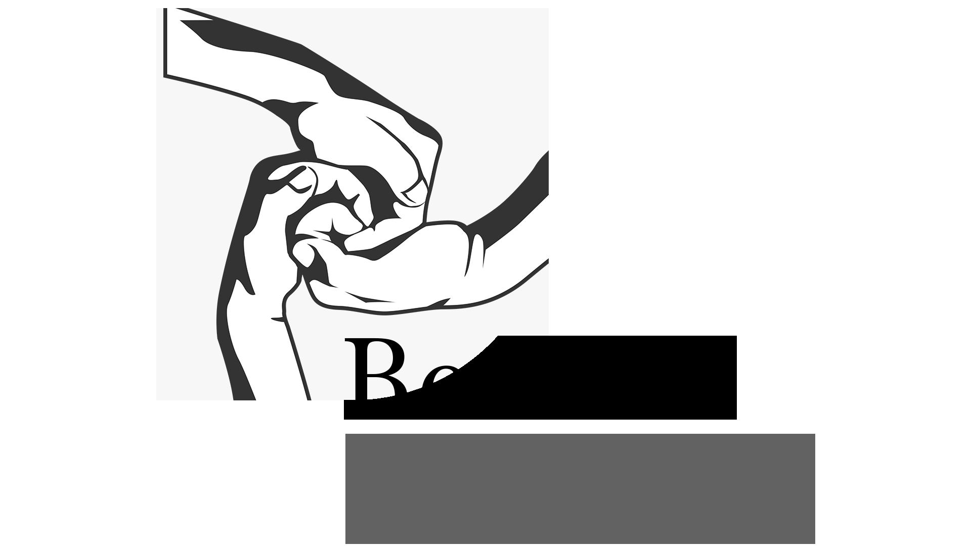 BSPD-Logo-light